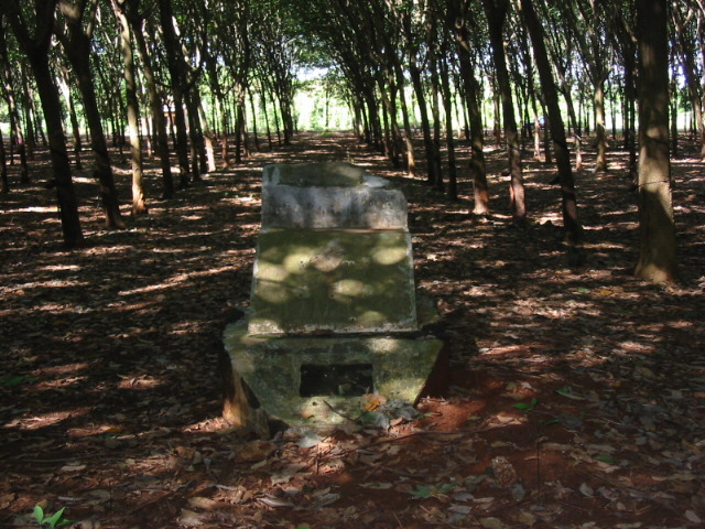 2005 - ANZAC Bn flagpole base [photo courtey Ross Milne W2]  The rubber trees are new plantings.